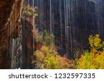 fall foliage at weeping rock in ... | Shutterstock . vector #1232597335