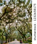 St. Augustine  Florida   The...