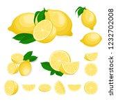 fresh lemon fruits  collection... | Shutterstock .eps vector #1232702008