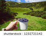 person with cup blueberries... | Shutterstock . vector #1232721142