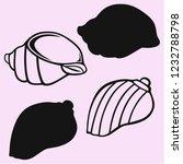 sea shell vector silhouette... | Shutterstock .eps vector #1232788798