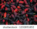 mulberrys fruit. closeup of the ... | Shutterstock . vector #1232851852