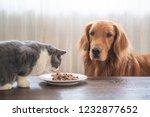 the golden hound watches the... | Shutterstock . vector #1232877652