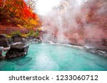 Japanese Hot Springs Onsen...