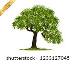 isolated trees on white... | Shutterstock .eps vector #1233127045
