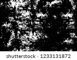 grunge overlay layer. abstract... | Shutterstock .eps vector #1233131872