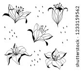 set of flower illustrations.... | Shutterstock .eps vector #1233159562