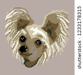 dog breed chinese crested...   Shutterstock .eps vector #1233178315