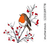robin. hand drawn vector... | Shutterstock .eps vector #1233189778
