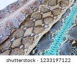 snake skin background | Shutterstock . vector #1233197122