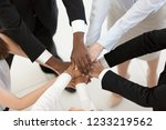diverse business people group... | Shutterstock . vector #1233219562