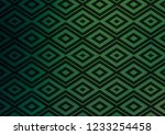light green vector texture with ...   Shutterstock .eps vector #1233254458