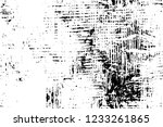 grunge overlay layer. abstract... | Shutterstock .eps vector #1233261865