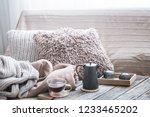 home comfort  living room with...   Shutterstock . vector #1233465202