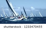 sailboat under white sails at... | Shutterstock . vector #1233470455