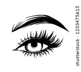 vector hand drawn beautiful... | Shutterstock .eps vector #1233475615