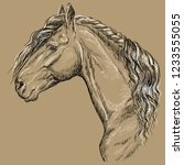 friesian horse portrait. horse... | Shutterstock .eps vector #1233555055