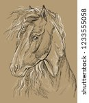 horse portrait. horse head with ... | Shutterstock .eps vector #1233555058