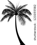 Stock vector realistic palm tree silhouette 123355582