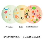healthy nutrition for human... | Shutterstock .eps vector #1233573685
