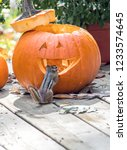 Small photo of A cute little pumpkin gazes at the roomy interior of this Halloween pumpkin. he's ready to move in!