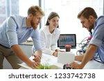 business adviser analyzing... | Shutterstock . vector #1233742738