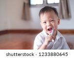 cute smiling little asian 30... | Shutterstock . vector #1233880645