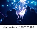 crowd watching fireworks and... | Shutterstock . vector #1233909985