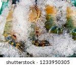 fresh blue shrimp on ice in the ... | Shutterstock . vector #1233950305