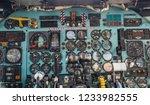 summa lombardo va  italy  may... | Shutterstock . vector #1233982555