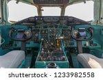 summa lombardo va  italy  may... | Shutterstock . vector #1233982558