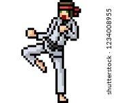 vector pixel art martial artist ... | Shutterstock .eps vector #1234008955