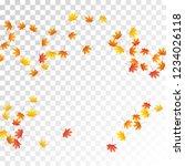 maple leaves vector  autumn... | Shutterstock .eps vector #1234026118