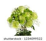 beautiful bouquet of green... | Shutterstock . vector #1234099522