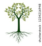 green tree and roots. vector... | Shutterstock .eps vector #1234216948