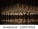 closeup set of empty champagne... | Shutterstock . vector #1234273018