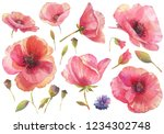 Watercolor Set With Red Poppy...