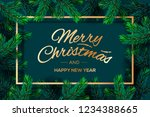 christmas tree branches... | Shutterstock .eps vector #1234388665