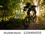 professional dh cyclist riding... | Shutterstock . vector #1234404535