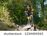 professional dh cyclist riding... | Shutterstock . vector #1234404565