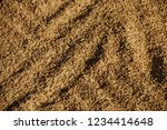 rice paddy on the floor.... | Shutterstock . vector #1234414648