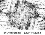 grunge overlay layer. abstract... | Shutterstock .eps vector #1234493365