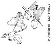 vector. black and white... | Shutterstock .eps vector #1234590628