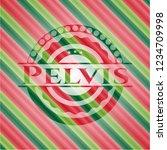 pelvis christmas style emblem.   Shutterstock .eps vector #1234709998
