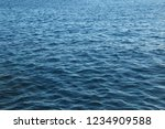 blue water waves texture on the ... | Shutterstock . vector #1234909588
