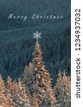 christmas background of pine... | Shutterstock . vector #1234937032