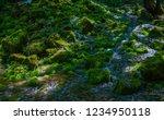small waterfall among rocks... | Shutterstock . vector #1234950118