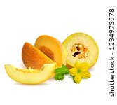 fresh  nutritious and tasty... | Shutterstock .eps vector #1234973578