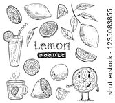 collection of vector doodles... | Shutterstock .eps vector #1235083855