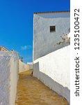 mediterranean traditional...   Shutterstock . vector #1235100472